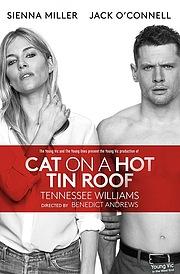 Кішка на розпеченому даху