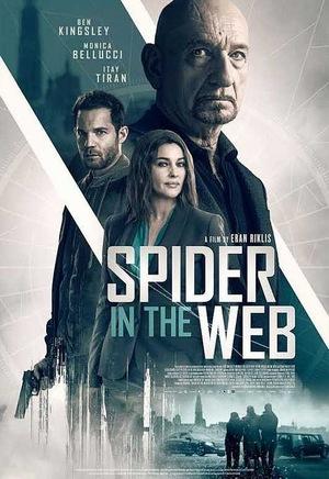 Павук в павутині