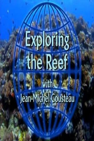 Изучение рифов