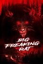 Big Freaking Rat